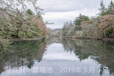 20190501kumoba00-0902.jpg