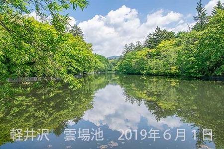 20190601kumoba00-1008.jpg