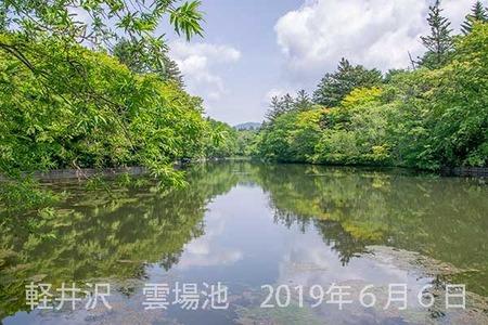 20190606kumoba00-1008.jpg