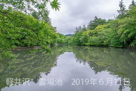 20190611kumoba00-0827.jpg