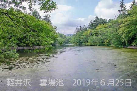 20190625kumoba00-1618.jpg
