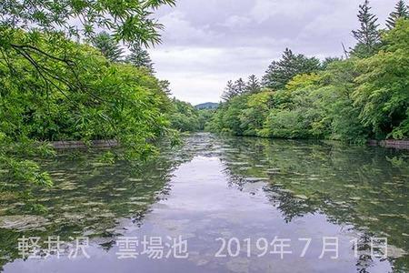 20190701kumoba00-1110.jpg