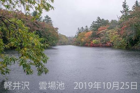 20191025kumoba00-1003.jpg