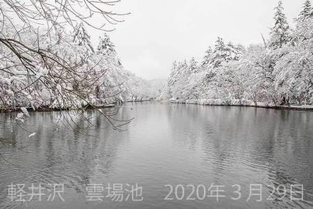 20200329kumoba00-1311.jpg
