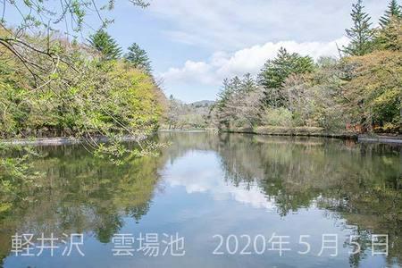 20200505kumoba00-1000.jpg