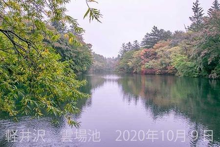 20201009kumoba00-0905.jpg