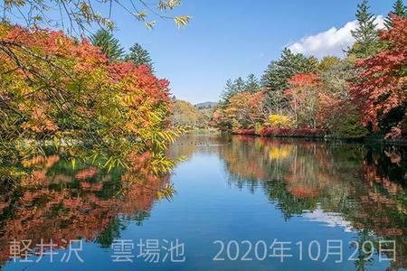 20201029kumoba00-1035.jpg