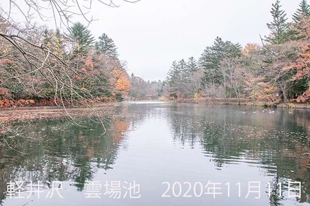 20201111kumoba00-0843.jpg