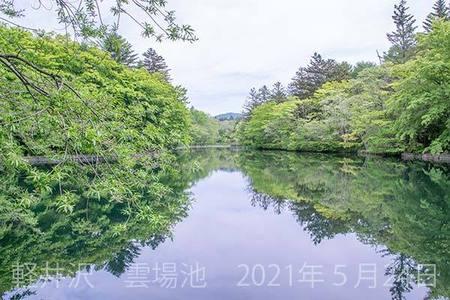 20210524kumoba00-0924.jpg