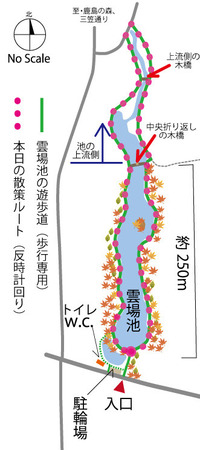 kumoba_map2020_下流道路.jpg