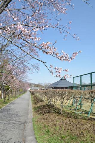 0419yagasaki01.jpg