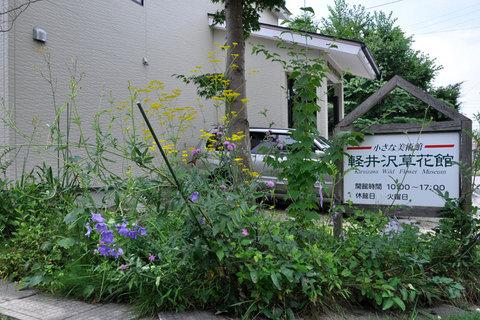 0823flowers02.jpg