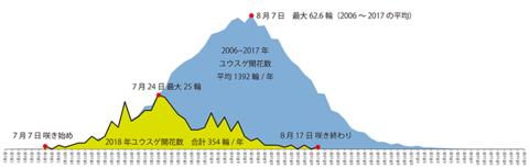 2006-2018ユウスゲ開花数グラフ.png