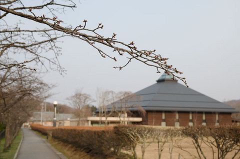 20140417yagasaki01.jpg