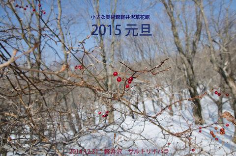 20141231sarutoriibara.jpg