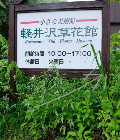 20150619yusuge_roji_kakeiB01.jpg