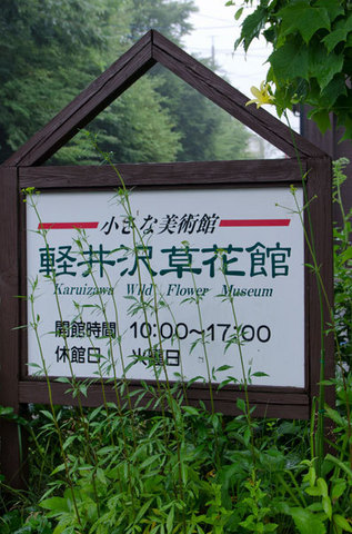 20150716yusuge_roji_kakeiA03-1716.jpg