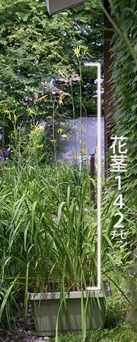 20160724yusuge_8y_planter_B01.jpg