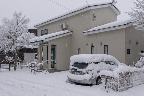 20170327museum-snow.jpg