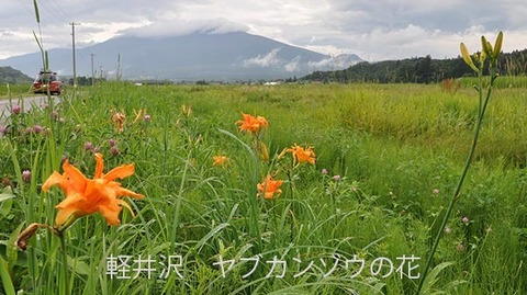 20170428museum-yabukanzo-photo05.jpg