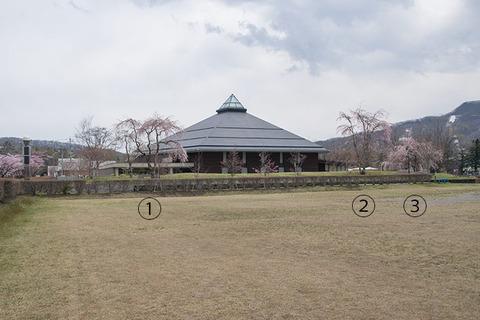 20170429yagasaki-sakura06.jpg