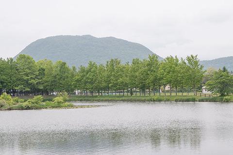 20170618yagasaki-hanareyama-katsura.jpg