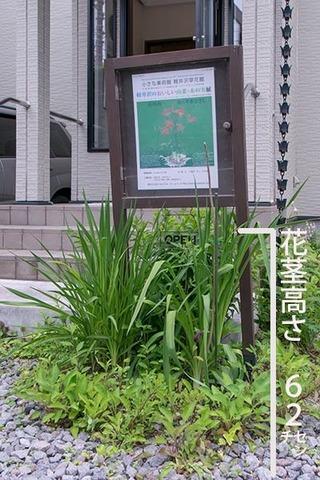 20170629yusuge_entrance01.jpg