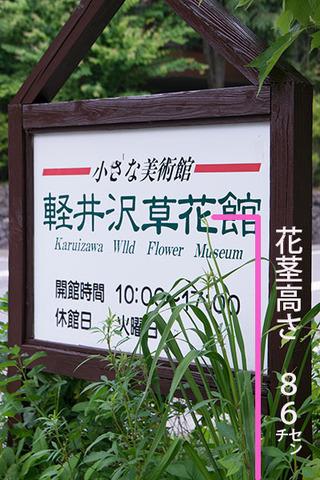 20170629yusuge_kanban01.jpg