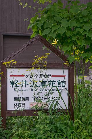 20170804yusuge_kanbanmae01-1637.jpg