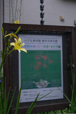 20170807yusuge_irikuchi-1629.jpg
