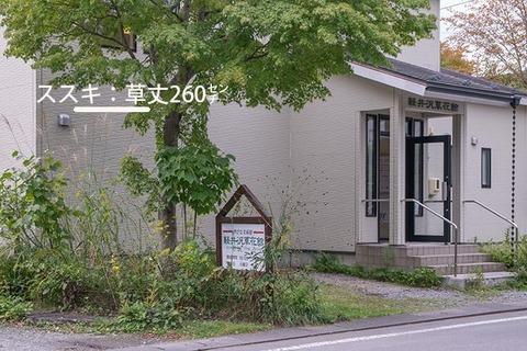 20170920museum_susuki01.jpg