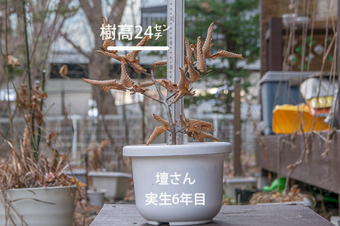 20171125inubuna_6y_dan_01.jpg