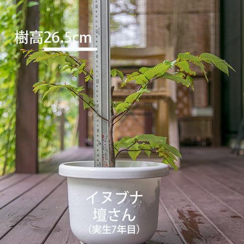 20180930inubuna_7y_dan_01.jpg
