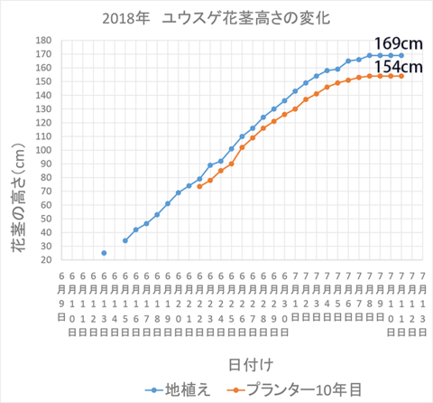 2018花茎高グラフ0711.png