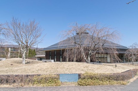 20190406yagasaki-shidare-sakuraB.jpg