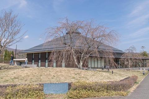 20190418yagasaki-shidare-sakuraB.jpg