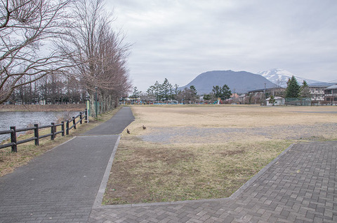 20190421yagasaki-park-hanareyama_asamayama.jpg
