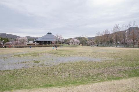 20190429yagasaki-park01.jpg