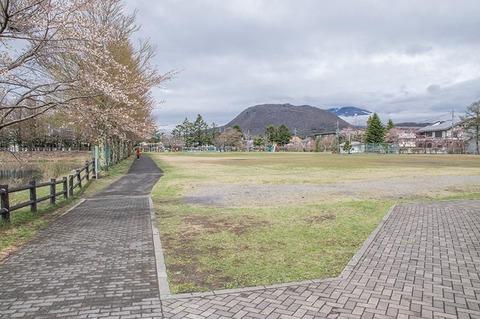 20190501yagasaki-park-hanareyama_asamayama.jpg