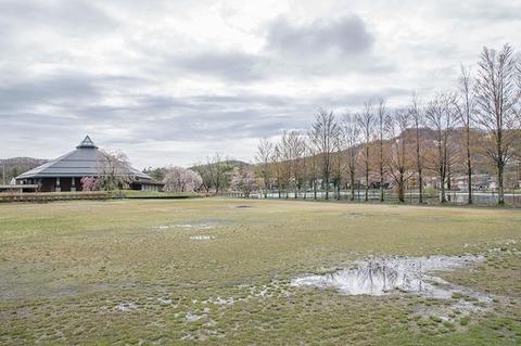 20190501yagasaki-park01.jpg
