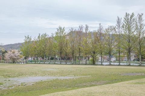 20190509yagasaki-park01.jpg
