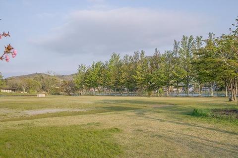 20190512yagasaki-park01.jpg