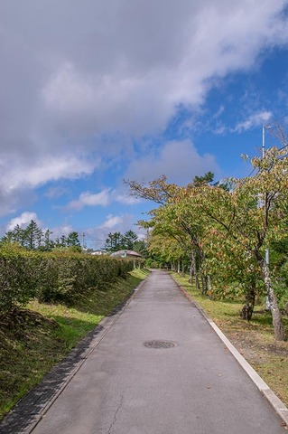 20190908yagasaki-sakura02.jpg