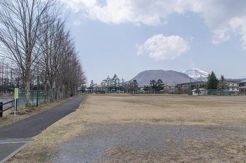 20200416yagasaki-katsura02.jpg