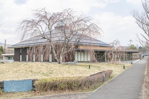 20200416yagasaki-shidare-sakuraB01.jpg