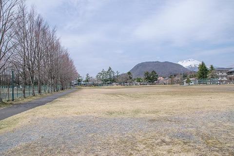 20200421yagasaki-katsura02.jpg