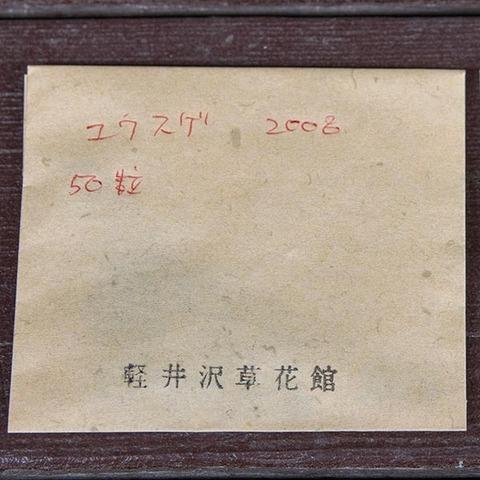 20200427yusuge_seed_2008-01.jpg