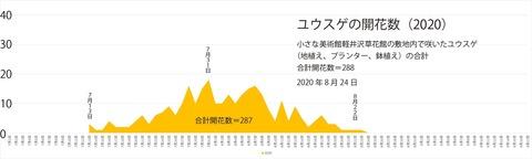 2020ユウスゲ開花数グラフ修正.jpg