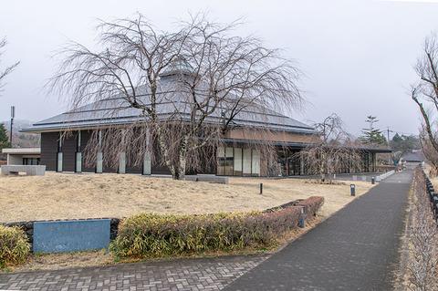 20210321yagasaki-shidare-sakuraB01.jpg
