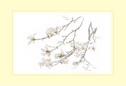 コブシ2014-01.jpg